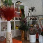 Стабилизированные цветы и растения в Краснодаре