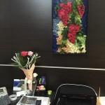 Стабилизированные цветы и растения в Харькове