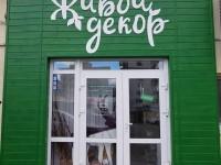 Стабилизированные цветы и растения в Новороссийске