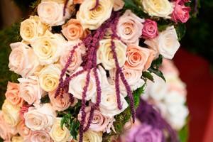 Выставка цветы 2013