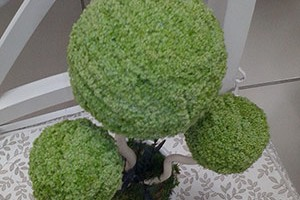 Флористический салон Green Group