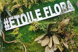 Презентация Этуаль Флора на ЦветыЭкспо 2017 (фото)