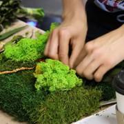 Вертикальное озеленение (фото с мастер-класса)
