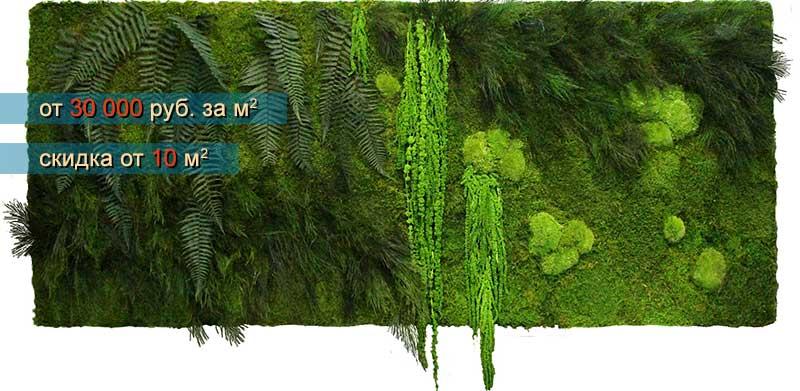 Комбинированные панели из стабилизированного мха и растений